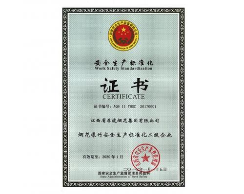 2017集团公司安全生产标准化二级企业证书