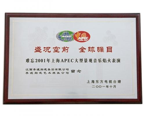 2001年上海APEC大型景观音乐焰火表演